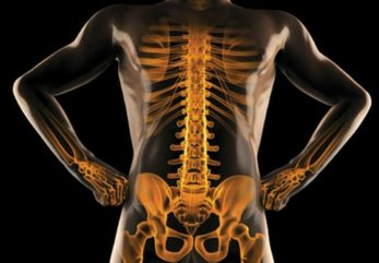 Increase Bone Strength